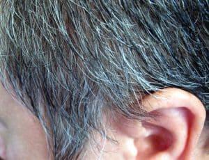 pelo gris